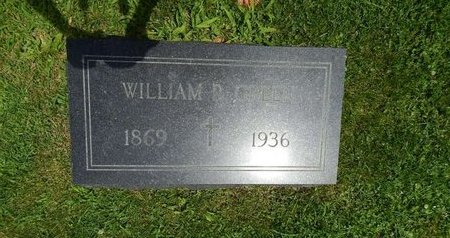 GREEN, WILLIAM - Will County, Illinois | WILLIAM GREEN - Illinois Gravestone Photos