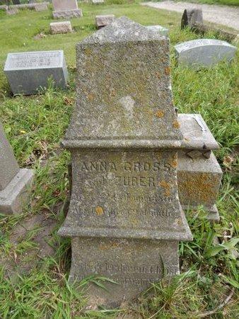 GROSS, ANNA - Will County, Illinois | ANNA GROSS - Illinois Gravestone Photos