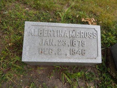 GROSS, ALBERTINA M - Will County, Illinois | ALBERTINA M GROSS - Illinois Gravestone Photos