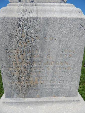 GUNN, EDWARD J - Will County, Illinois | EDWARD J GUNN - Illinois Gravestone Photos