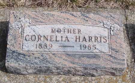 HARRIS, CORNELIA - Will County, Illinois | CORNELIA HARRIS - Illinois Gravestone Photos