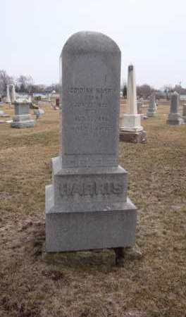 HARRIS, JEDIDIAH - Will County, Illinois   JEDIDIAH HARRIS - Illinois Gravestone Photos