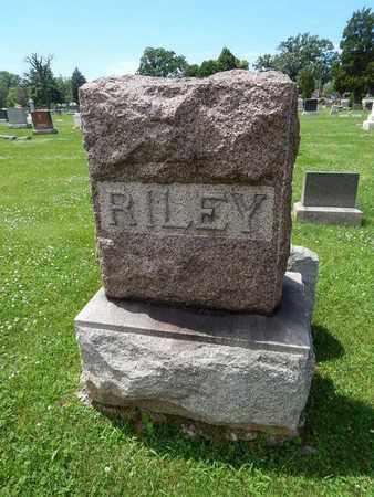 RILEY, FAMILY STONE - Will County, Illinois | FAMILY STONE RILEY - Illinois Gravestone Photos