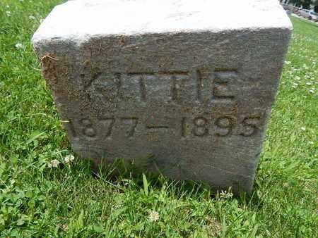 RILEY, KITTIE - Will County, Illinois   KITTIE RILEY - Illinois Gravestone Photos