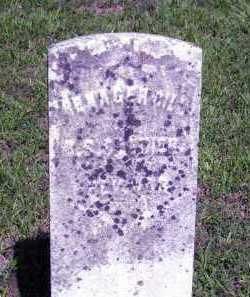 GILL, BENAGER - Williamson County, Illinois | BENAGER GILL - Illinois Gravestone Photos