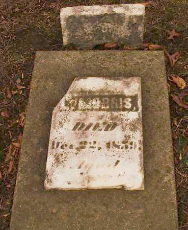 MORRIS, L.. - Williamson County, Illinois | L.. MORRIS - Illinois Gravestone Photos