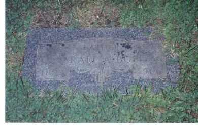 BULL, ISAREL A - Winnebago County, Illinois   ISAREL A BULL - Illinois Gravestone Photos
