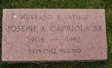 CAPRIOLA, JOSEPH - Winnebago County, Illinois | JOSEPH CAPRIOLA - Illinois Gravestone Photos