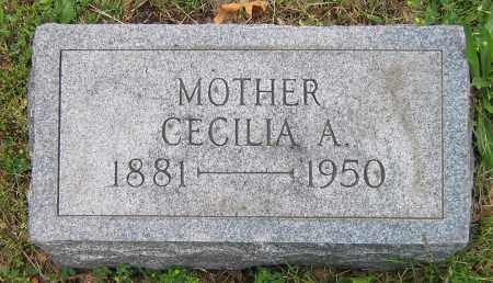 COX, CECILIA A - Winnebago County, Illinois | CECILIA A COX - Illinois Gravestone Photos