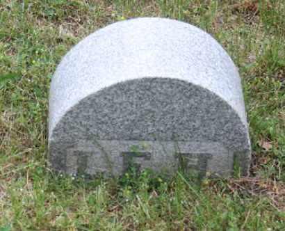 HOWELL HASKELL, LYDIA E - Winnebago County, Illinois | LYDIA E HOWELL HASKELL - Illinois Gravestone Photos