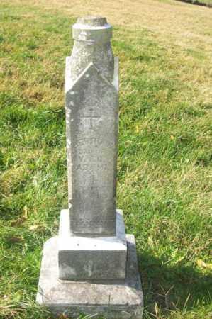 ADAMI, BERTHA  (FULL VIEW) - Woodford County, Illinois | BERTHA  (FULL VIEW) ADAMI - Illinois Gravestone Photos