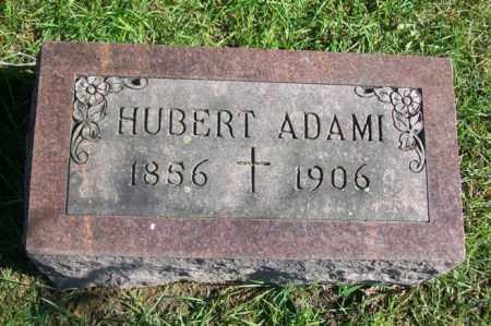 ADAMI, HUBERT - Woodford County, Illinois | HUBERT ADAMI - Illinois Gravestone Photos
