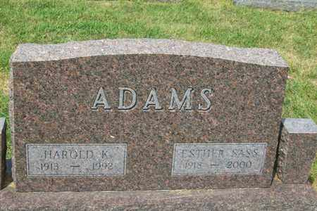 ADAMS, ESTHER RUTH - Woodford County, Illinois | ESTHER RUTH ADAMS - Illinois Gravestone Photos
