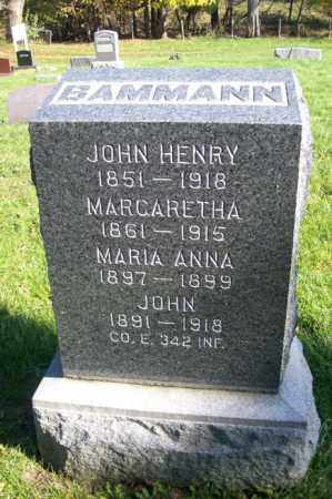 BAMMANN, JOHN - Woodford County, Illinois | JOHN BAMMANN - Illinois Gravestone Photos