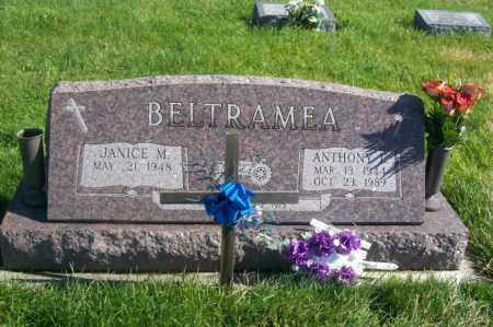 BELTRAMEA, ANTHONY - Woodford County, Illinois   ANTHONY BELTRAMEA - Illinois Gravestone Photos