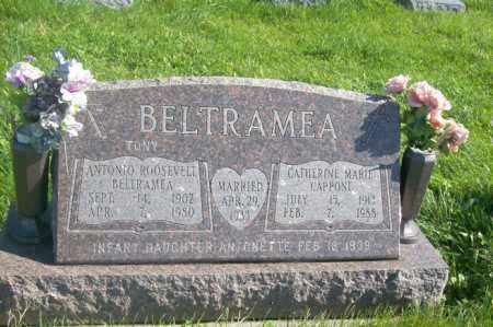 BELTRAMEA, ANOTOINETTE - Woodford County, Illinois | ANOTOINETTE BELTRAMEA - Illinois Gravestone Photos
