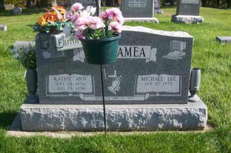 BELTRAMEA, KATHY ANN - Woodford County, Illinois | KATHY ANN BELTRAMEA - Illinois Gravestone Photos