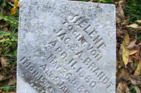 BRANDT, HELENE - Woodford County, Illinois | HELENE BRANDT - Illinois Gravestone Photos