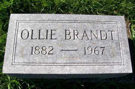BRANDT, OLLIE - Woodford County, Illinois   OLLIE BRANDT - Illinois Gravestone Photos