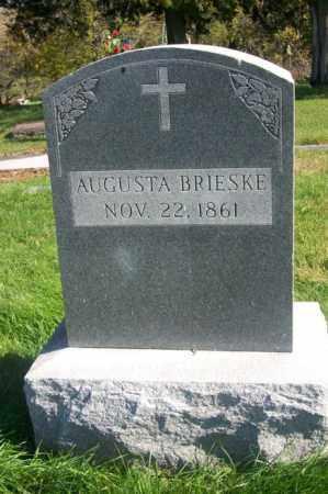 BRIESKE, AUGUSTA - Woodford County, Illinois | AUGUSTA BRIESKE - Illinois Gravestone Photos