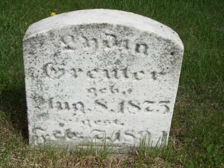 GREUTER, LYDIA - Woodford County, Illinois | LYDIA GREUTER - Illinois Gravestone Photos