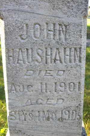 HAUSHAHN, JOHN - Woodford County, Illinois | JOHN HAUSHAHN - Illinois Gravestone Photos