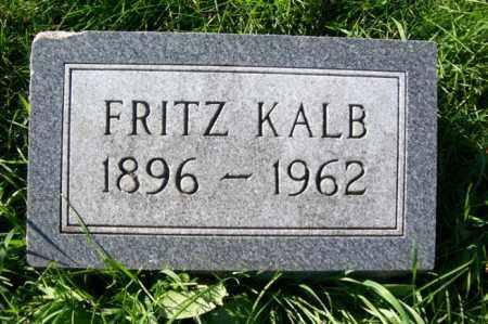 KALB, FRITZ - Woodford County, Illinois | FRITZ KALB - Illinois Gravestone Photos