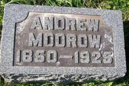 MODROW, ANDREW - Woodford County, Illinois | ANDREW MODROW - Illinois Gravestone Photos