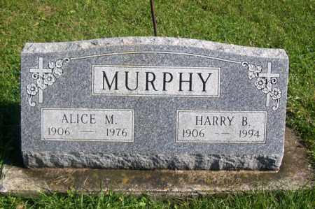 MURPHY, HARRY B. - Woodford County, Illinois | HARRY B. MURPHY - Illinois Gravestone Photos