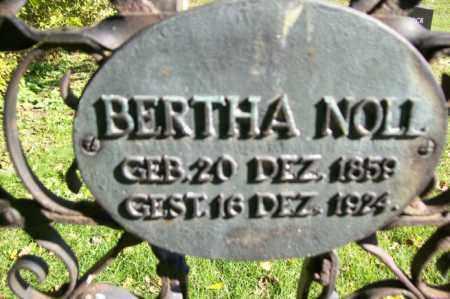 NOLL, BERTHA - Woodford County, Illinois | BERTHA NOLL - Illinois Gravestone Photos
