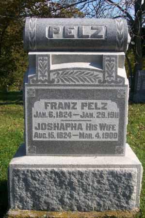 PELZ, FRANZ - Woodford County, Illinois | FRANZ PELZ - Illinois Gravestone Photos