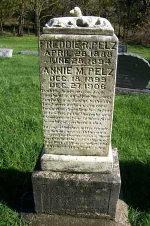PELZ, ANNIE M. - Woodford County, Illinois | ANNIE M. PELZ - Illinois Gravestone Photos