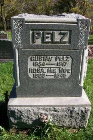 PELZ, ROSA - Woodford County, Illinois | ROSA PELZ - Illinois Gravestone Photos