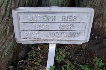 RIES, JOSEPH - Woodford County, Illinois   JOSEPH RIES - Illinois Gravestone Photos