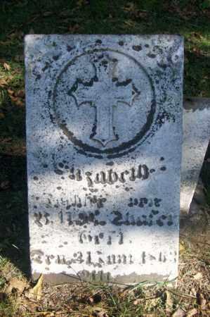 SHAFER, ELIZABETH - Woodford County, Illinois | ELIZABETH SHAFER - Illinois Gravestone Photos