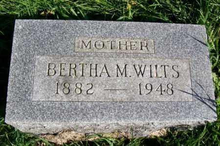 WILTS, BERTHA M. - Woodford County, Illinois | BERTHA M. WILTS - Illinois Gravestone Photos