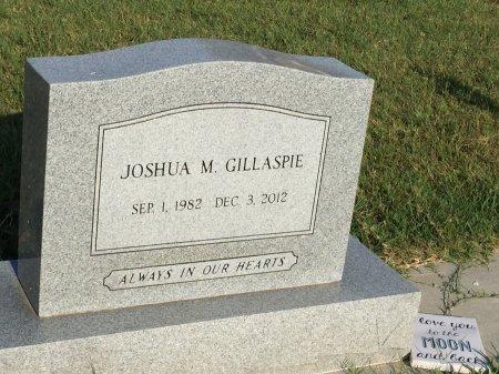 GILLASPIE, JOSHUA MICHAEL - Allen County, Kansas | JOSHUA MICHAEL GILLASPIE - Kansas Gravestone Photos