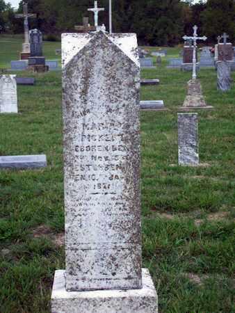 PICKERT, MARY - Anderson County, Kansas   MARY PICKERT - Kansas Gravestone Photos
