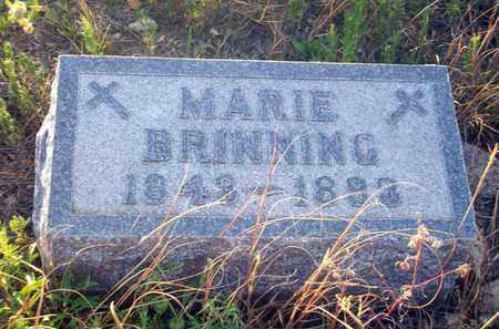BRINNING, MARIE - Barton County, Kansas   MARIE BRINNING - Kansas Gravestone Photos