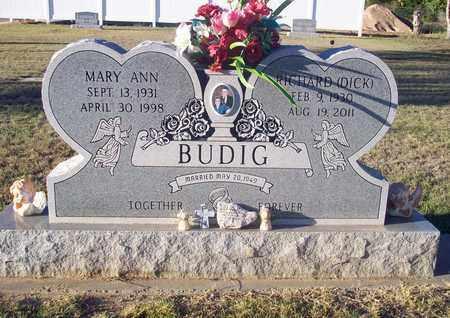 DOBSON BUDIG, MARY ANN - Barton County, Kansas | MARY ANN DOBSON BUDIG - Kansas Gravestone Photos