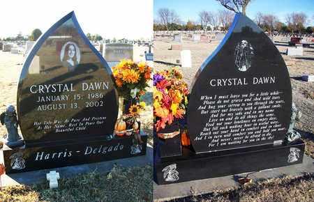 HARRIS-DELGADO, CRYSTAL DAWN - Barton County, Kansas | CRYSTAL DAWN HARRIS-DELGADO - Kansas Gravestone Photos