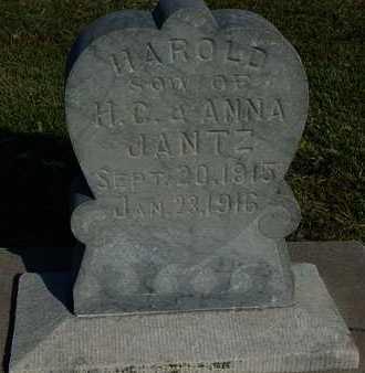 JANTZ, HAROLD - Barton County, Kansas   HAROLD JANTZ - Kansas Gravestone Photos