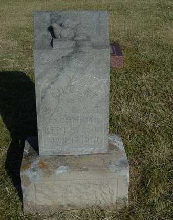 SCHMIDT, GILBERT - Barton County, Kansas   GILBERT SCHMIDT - Kansas Gravestone Photos