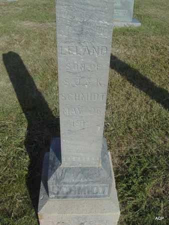 SCHMIDT, LELAND - Barton County, Kansas | LELAND SCHMIDT - Kansas Gravestone Photos