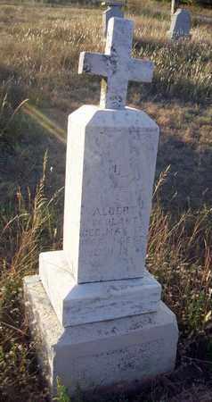 SKOLAUT, ALBERT - Barton County, Kansas | ALBERT SKOLAUT - Kansas Gravestone Photos