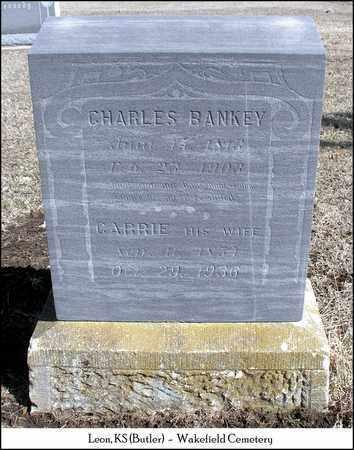 BANKEY, CARRIE - Butler County, Kansas   CARRIE BANKEY - Kansas Gravestone Photos