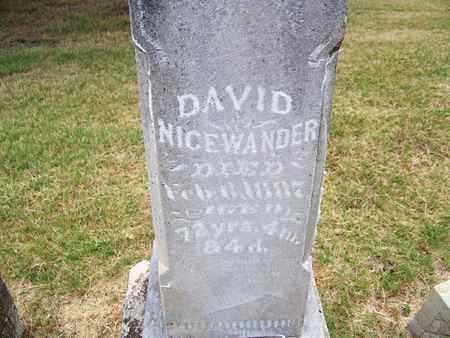 NICEWANDER, DAVID - Butler County, Kansas | DAVID NICEWANDER - Kansas Gravestone Photos