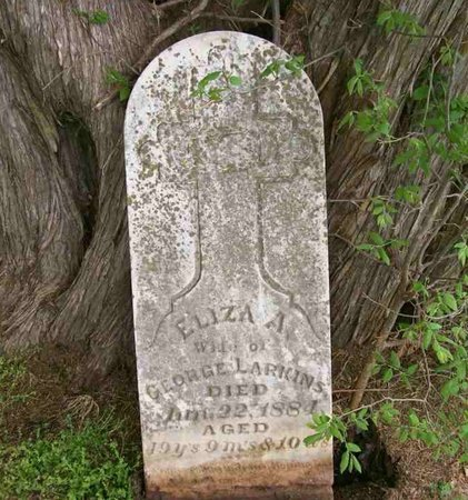 LARKINS, ELIZA ANN - Chase County, Kansas | ELIZA ANN LARKINS - Kansas Gravestone Photos