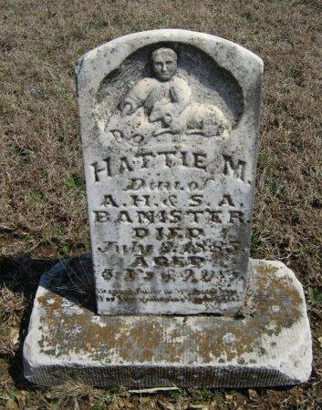 BANISTER, HATTIE M - Chautauqua County, Kansas | HATTIE M BANISTER - Kansas Gravestone Photos