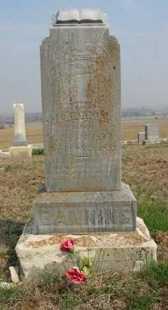 "BANNING, HERMAN LONZO ""H L"" - Chautauqua County, Kansas   HERMAN LONZO ""H L"" BANNING - Kansas Gravestone Photos"